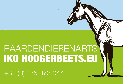 Afbeelding › Paardendierenarts Iko Hoogerbeets